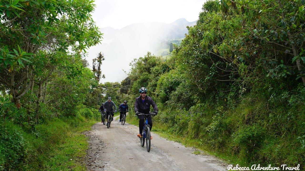 Biking in the Cloud Forest - - Ecuador highlights