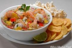 Ecuadorian Ceviche - Coast Gastronomy