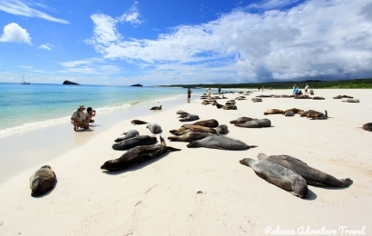 12D Galapagos Islands Expedition Ecuador