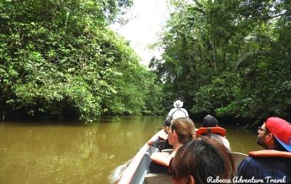 Canoe Trip Cuyabeno