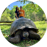 Couple with Galapagos Tortoise