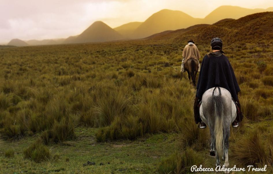 Travel Ecuador - Horse ride mountains