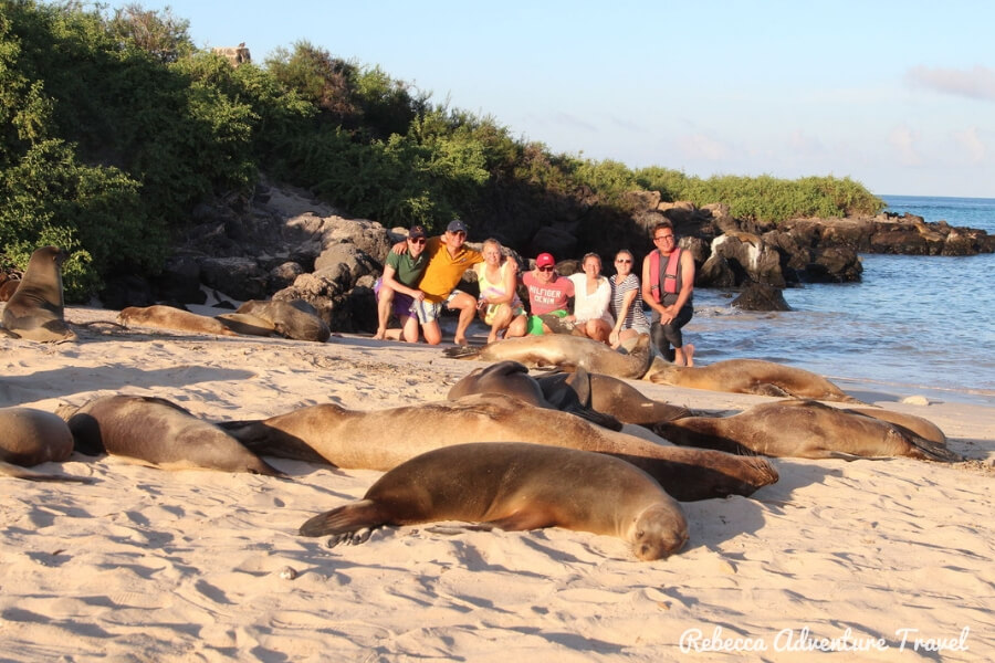 Travel Ecuador - Sleeping sea lions