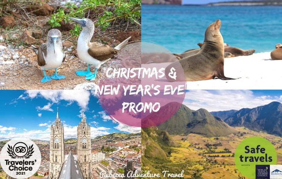 CHRISTMAS & NEW YEARS EVE 2021 SPECIAL PROMO